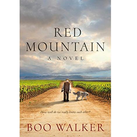 Red Mountain by Boo Walker PDF