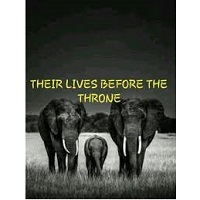 Their Lives Before The Throne by Thandeka Zuke