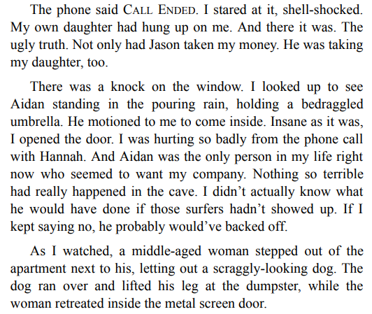 A Stranger on the Beach by Michele Campbell PDF