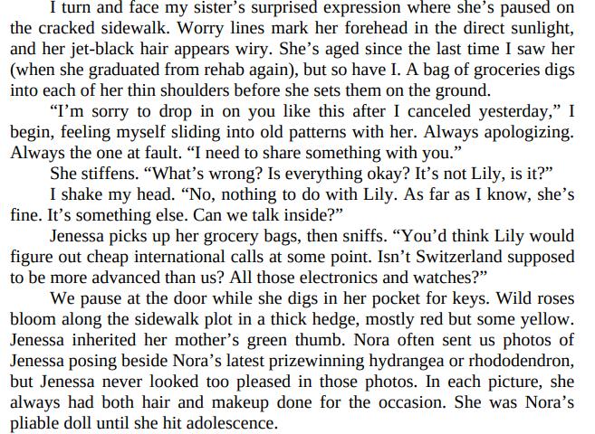 Lies We Bury by Elle Marr PDF