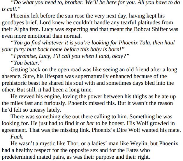 Hot Dire Wolf Nights by C.D. Gorri PDF