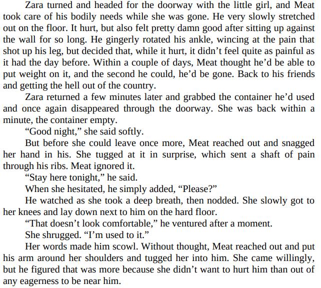Defending Zara by Susan Stoker PDF