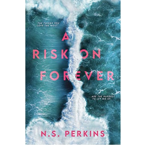 A Risk on Forever by N.S. Perkins ePub